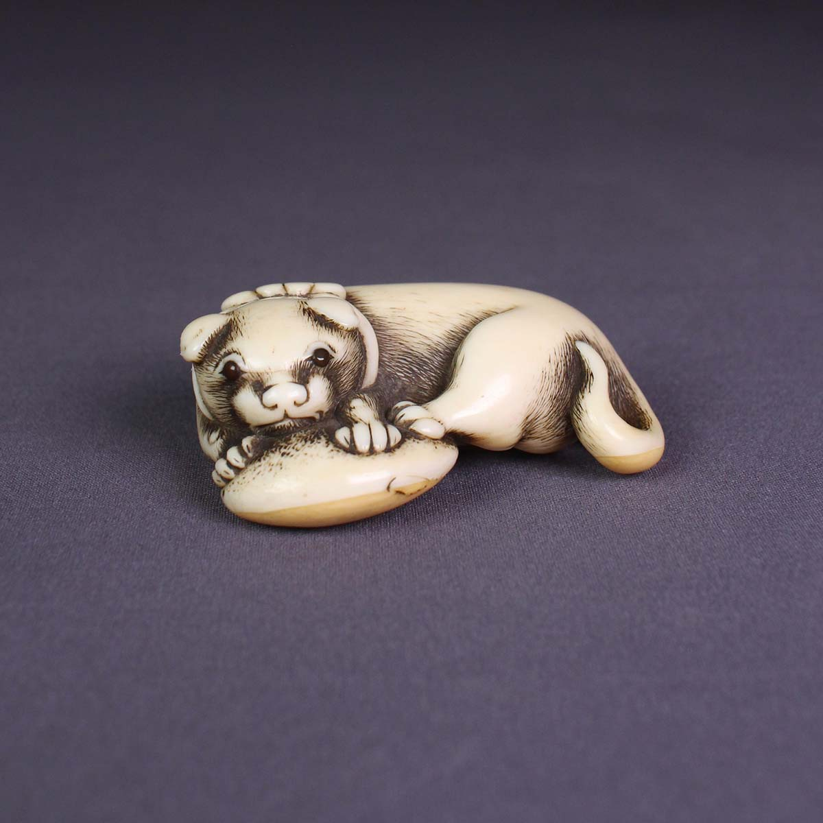 Ivory Netsuke of Dog with a Fugu Fish
