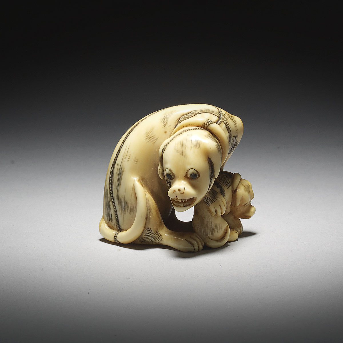 Ivory Netsuke of a Dog and Puppy by Takenobu_MR2920_v1