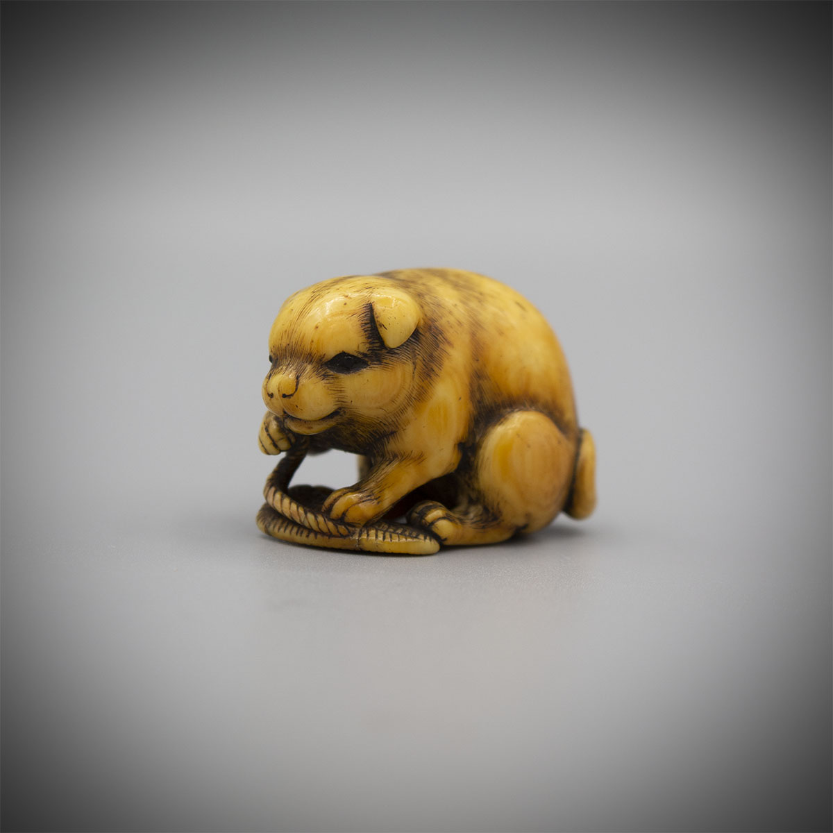 Stained Netsuke of a dog